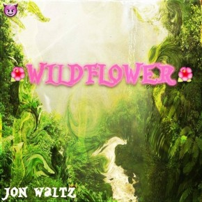 [New Music]: Jon Waltz – Wildflower